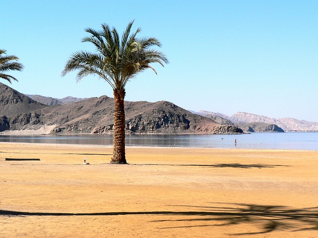 What is there to Do in Sharm el Sheikh Egypt