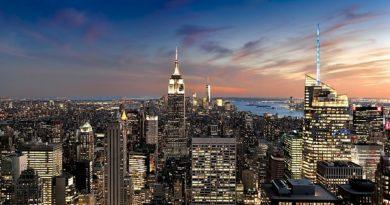 New York Sightseeing Trips