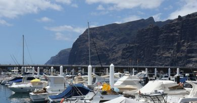 Things to Do in Los Gigantes