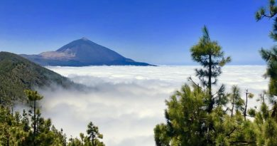 What to Do in Teide National Park