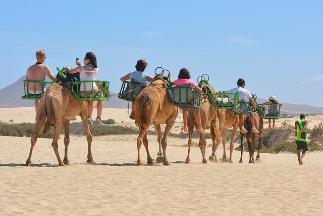 Camel Ride Maspalomas