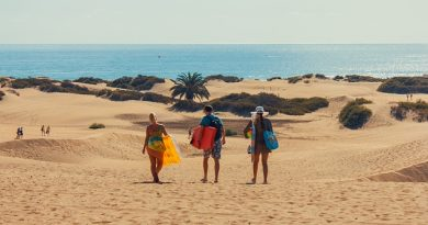 Looking for Things to do in Maspalomas